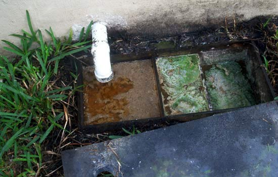 Grease trap that was not permitted or properly installed